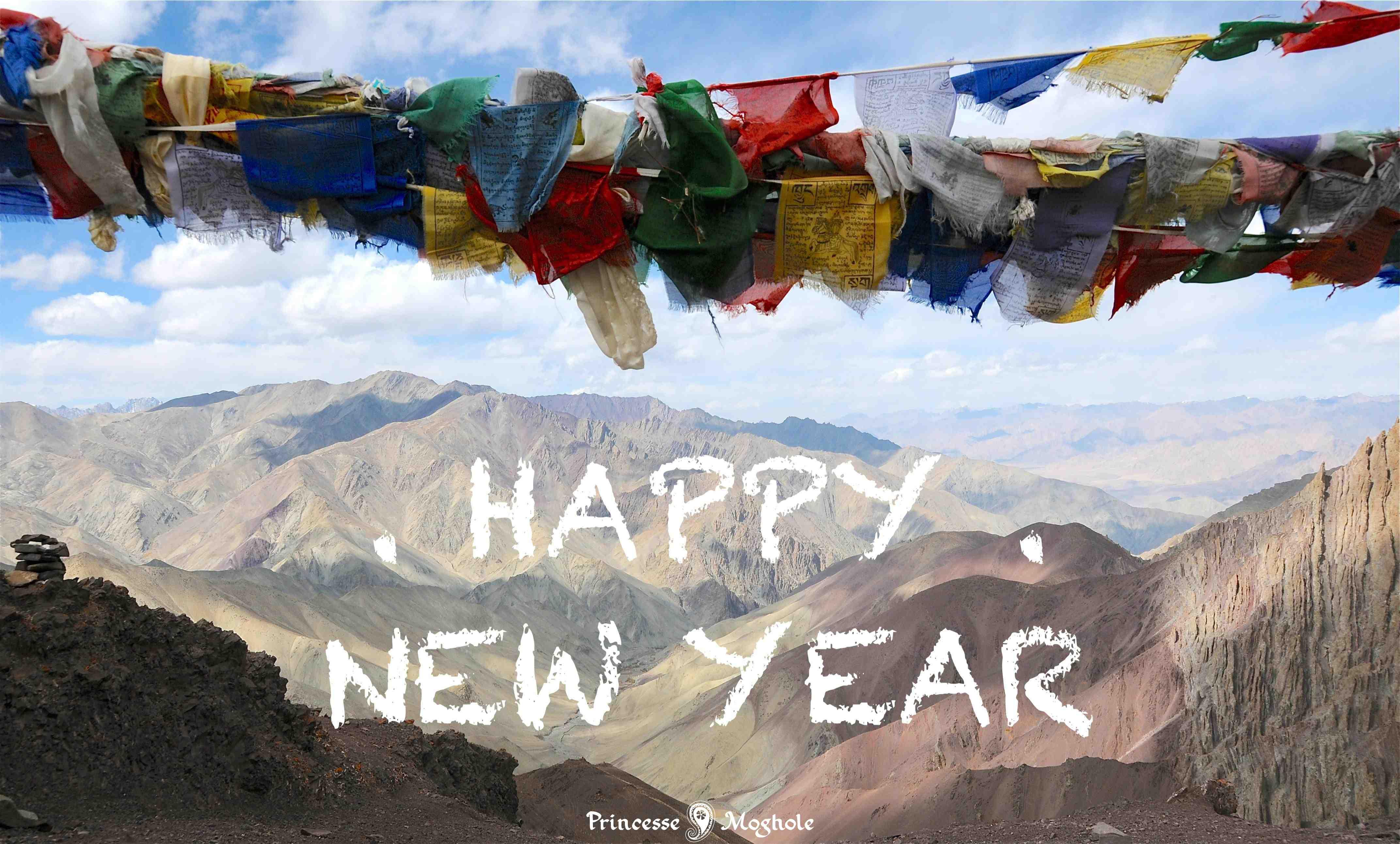 Douce et heureuse année 2017 en véritable pashmina cachemire