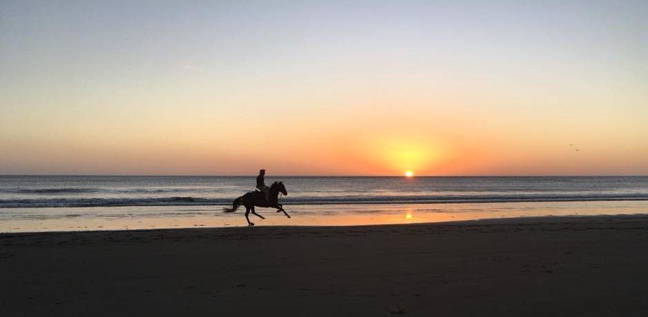 cowboy au nicaragua sur la plage